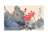 Fragrant Lotus Giclee Print by Haizann Chen