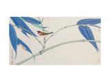 Green Bamboo and Red Bird Lámina giclée por Hsi-Tsun Chang
