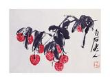Litchis Giclee Print by Baishi Qi