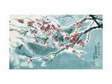 Plum Blossom in Snow Giclee Print by Haizann Chen