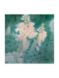 Flower Series IV Giclee Print by Minrong Wu