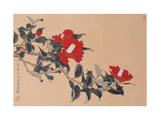Red Cap Flower Giclee Print by Hsi-Tsun Chang