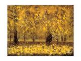 Golden Age Giclee-trykk av Pihua Hsu