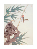 Bamboo and Bird in the Wind Giclee Print by Hsi-Tsun Chang