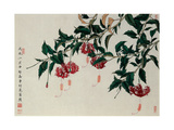 Fringed Hibiscus Giclee Print by Hsi-Tsun Chang