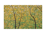 The Spring of Dita Bark Trees Giclee Print by Chingkuen Chen