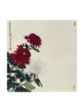 Winter Flowers Giclee Print by Hsi-Tsun Chang