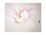 Lotus Giclee Print by Minrong Wu