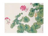 Geranium Giclee Print by Hsi-Tsun Chang