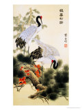 Cranes and Pine Tree Reproduction procédé giclée par Fangyu Meng