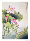 Lotuses and Bird Giclee Print by Fangyu Meng