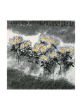 Daisies Giclee Print by Wanqi Zhang