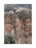 Tree's Spirit and the Reflection Giclee Print by Wanqi Zhang