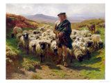 The Highland Shepherd, 1859 Giclée-Premiumdruck von Rosa Bonheur