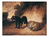 Two Jaguars from Peru Giclee Print by Antoine-Louis Barye