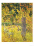 Man Picking Fruit from a Tree, 1897 Giclee Print by Paul Gauguin