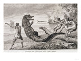 "Catching an Alligator with Lasso, from ""The Amazon and Madeira Rivers,"" by Franz Keller, 1874 Giclee Print"