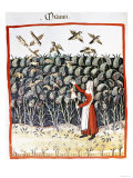 Woman Protecting Her Crop of Millet from the Birds, 13th Century Giclee Print