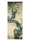 Family of Monkeys in a Tree Giclee Print