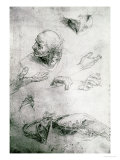 Studies for the Figure of Bramante (1444-1515) Giclee Print by  Raphael