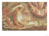 Swan, Restored circa 1200 Giclee Print