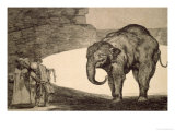 Folly of Beasts, from the Follies Series, or Other Laws for the People, circa 1815-24 Giclee Print by Francisco de Goya