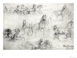 Study of Horses Giclee Print by Rosa Bonheur