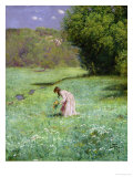 Woodland Meadow, 1876 Gicl&#233;e-Druck von Hans Thoma