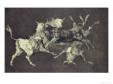 Folly of the Bulls, from the Follies Series, circa 1815-24 Premium Giclee Print by Francisco de Goya
