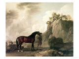 """Cato"" and Groom Reproduction procédé giclée par George Stubbs"