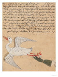 Merchant from Isfahan Flying, from the Wonders of the Creation and the Curiosities of Existence Giclee Print