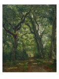 Path in the Forest, 1864 Premium Giclee Print by Henri Joseph Constant Dutilleux