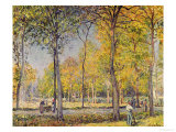 The Bois De Boulogne Giclee Print by Alfred Sisley