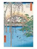 "The Bridge with Wisteria or Kameido Tenjin Keidai, Plate 57 from ""100 Views of Edo,"" 1856 Giclee Print by Ando Hiroshige"