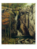 The Chasm at Conches, 1864 Giclee Print by Gustave Courbet