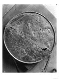 Disc of Theodosius I (347-395) the Great, circa 379-395 Giclee Print