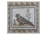 Pavement Depicting a Pheasant Giclee Print