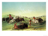 Buffalo Hunt, Plate 7 from Catlin's North American Collection, Engraved by Mcgahey Giclee Print by George Catlin