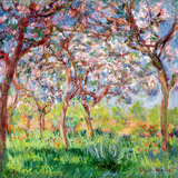 Printemps a Giverny, 1903 Premium Giclee Print by Claude Monet
