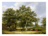 Cattle Grazing Giclee Print by James Stark