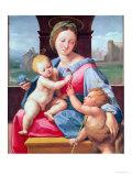 The Aldobrandini Madonna or the Garvagh Madonna, circa 1509-10 Impression giclée par  Raphael