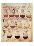 "Series of Flagons for Urine Analysis, from ""Tractatus De Pestilencia"" Reproduction procédé giclée par M. Albik"