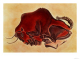 Rock Painting of a Bison, Late Magdalenian, 13000 BC Giclee Print