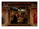 The Birth of Christ Giclee Print by Domenico Ghirlandaio