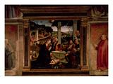 The Birth of Christ Giclee Print by Domenico Ghirlandaio