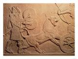 Ashurbanipal II Killing Lions, the Palace of Ashurbanipal II,Nimrud, Iraq, Neo-Assyrian, 668-627 BC Giclee Print