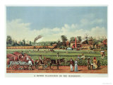 A Cotton Plantation on the Mississippi, the Harvest, 1884 Reproduction procédé giclée par Currier & Ives