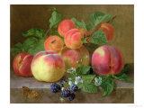 Still Life of Peaches Giclee Print by Henriette Ronner-Knip