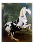 The Piebald Stallion at the Eisgruber Stud Giclee Print by Johann Georg de Hamilton