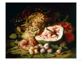 Still Life of Fruit on a Ledge Premium Giclee Print by Frans Snyders